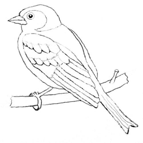 Heimische Vögel Archive Naturstrolche