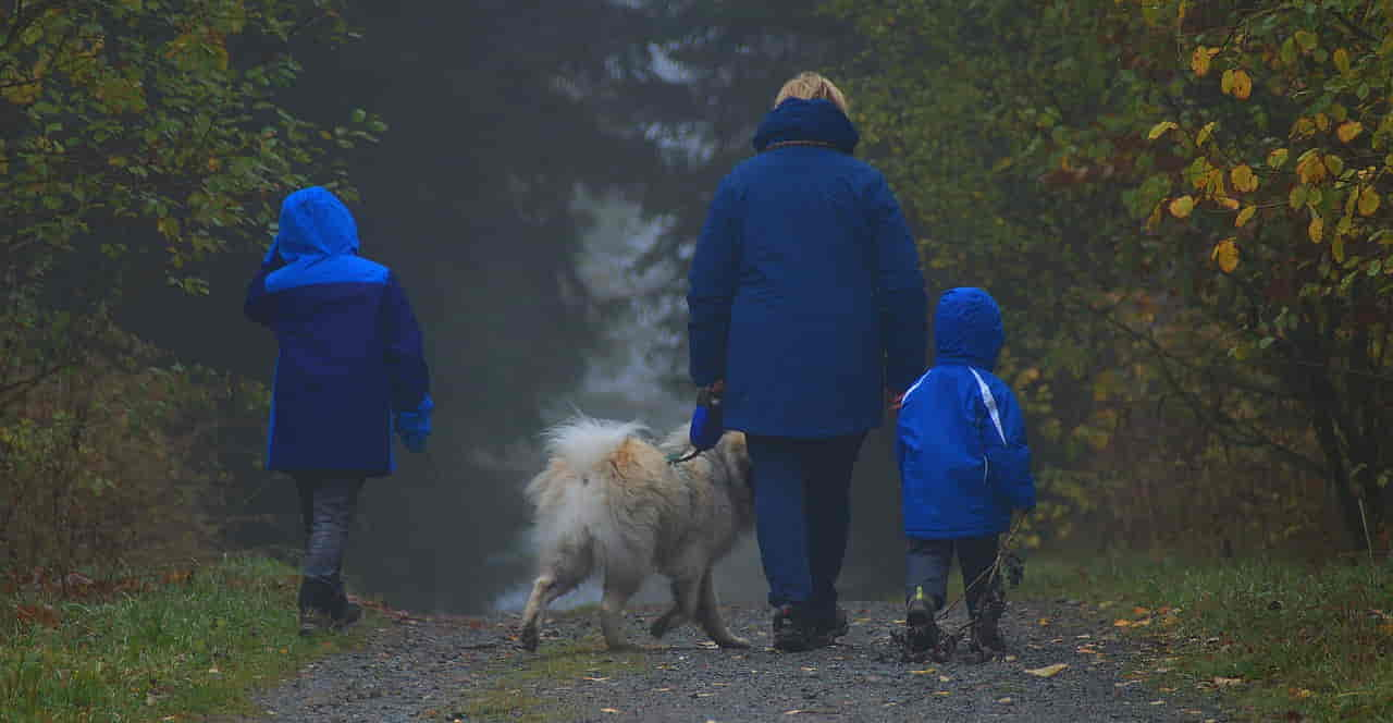 Familienausflug mit Kind und Hund